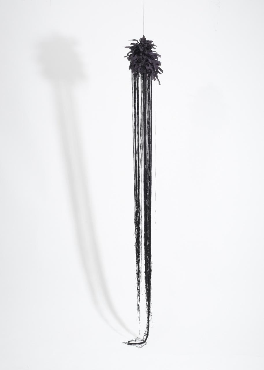 Den svarta (2014)
